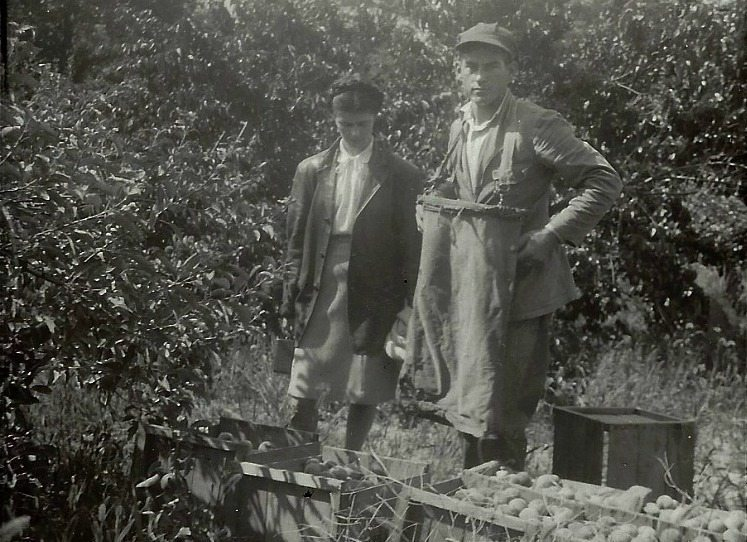 Mary and Walter Johnson in the apple orchard, Sept. 1946 (shortly after they were married in Arlington, VA in Aug. 1946)