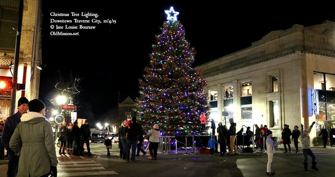 christmas tree lighting in downtown traverse city jane boursaw photo