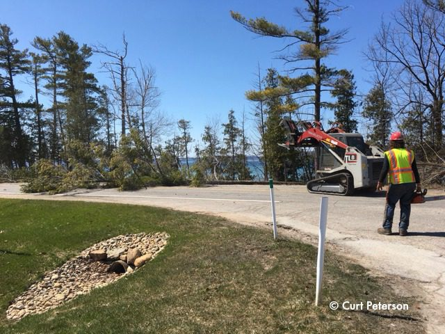 Tree Cutting Peninsula Drive