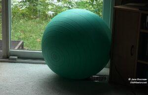 exercise ball, jane's world, reality wednesday