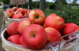 old mission fruit company, bern kroupa, apples