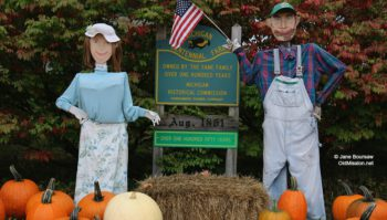 Holman Farms, pumpkins