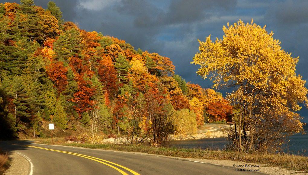 november light, the bluffs, bluff road, fall colors