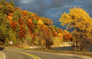 november light, the bluffs, bluff road, fall colors