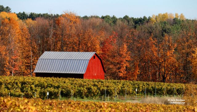 planning commission, brys vineyards, farms, peninsula township