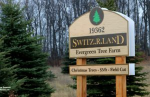 Switz.R.Land, Christmas Trees, Old Mission Peninsula