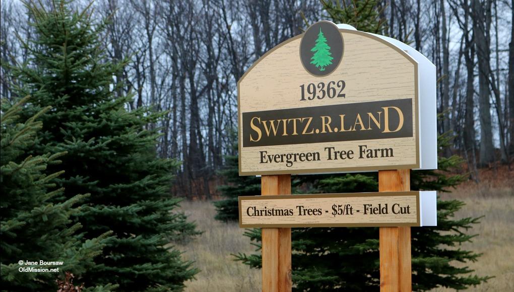 Switz.R.Land, Christmas Trees, Old Mission Peninsula