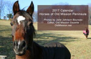 horses, old mission peninsula, 2017 calendar, online store