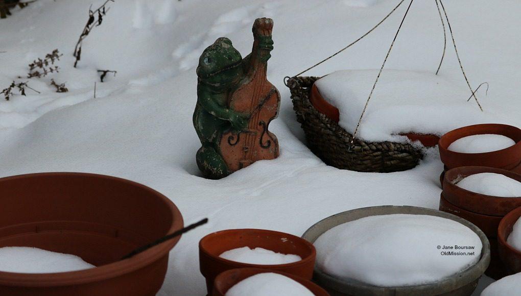 Mr. Frog, garden, spring, winter, flower garden