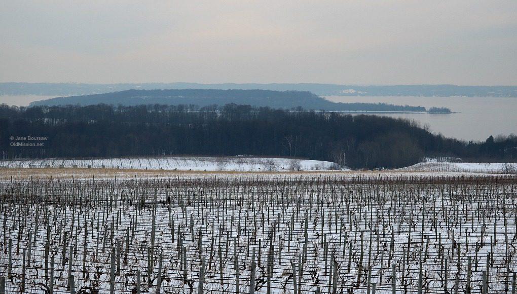 winery hill, january thaw, chateau grand traverse