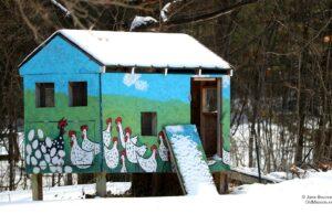 Old Mission, chicken coop, maryann sinn