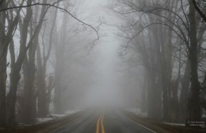 smokey hollow road, old mission peninsula, fog, january thaw