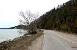 bluff road, february, winter