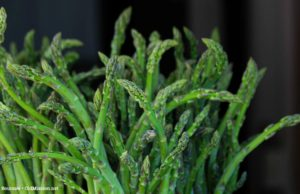 asparagus, warren orchards, between the bays, farm stands, old mission peninsula
