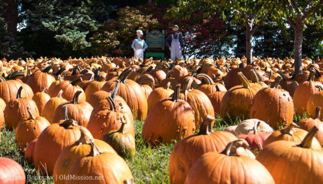 old mission peninsula, old mission, old mission michigan, old mission peninsula history, old mission gazette, peninsula township, cory holman, cory holman's pumpkin patch, holman family