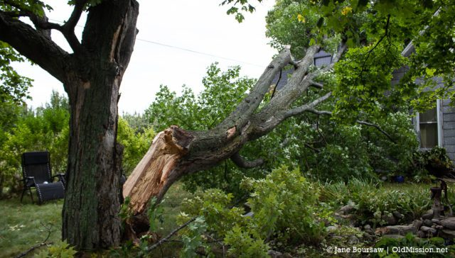 storm, northern michigan storm, august 2018 storm, old mission peninsula, old mission, old mission michigan, old mission gazette, peninsula township