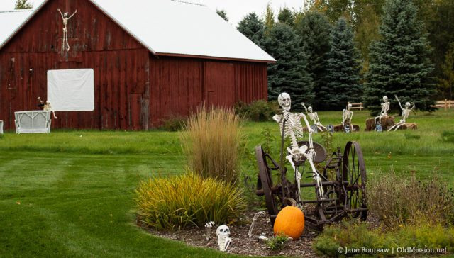 halloween, old mission peninsula, old mission gazette, cory holman's pumpkin patch, old mission inn, peninsula cellars, peninsula drive, skeletons, miss honeycrisp, sullivan's fruit stand, old mission, old mission photos, peninsula township
