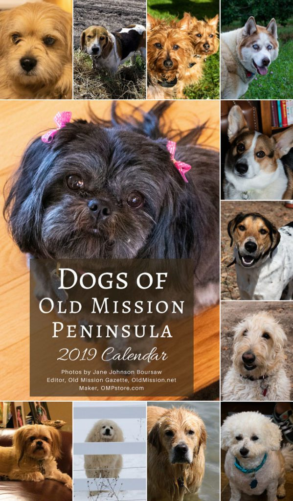 dogs, dogs of old mission peninsula 2019 calendar, ompstore, old mission pillows, old mission peninsula store, old mission gazette, old mission peninsula, old mission products, old mission tshirts, old mission apparel, old mission, old mission michigan, peninsula township