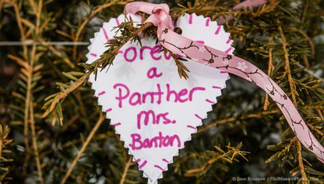 Ribbon Tree for Erin Banton at Old Mission Peninsula School