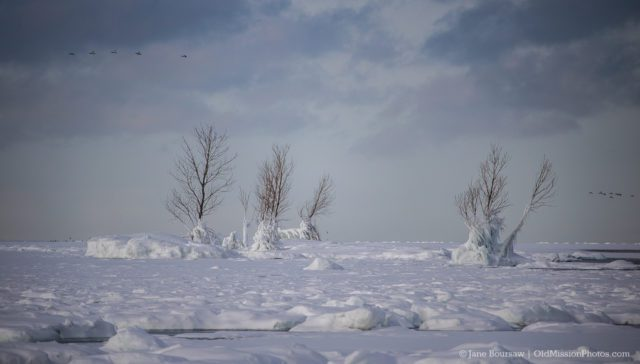 Frozen trees in West Bay off the shore of Mission Point Lighthouse on the Old Mission Peninsula