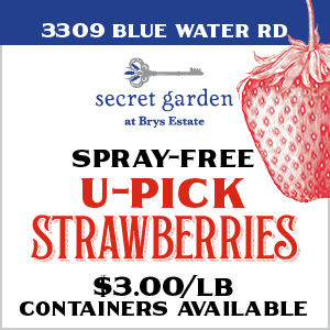 U-Pick Strawberries at Brys Secret Garden on the Old Mission Peninsula