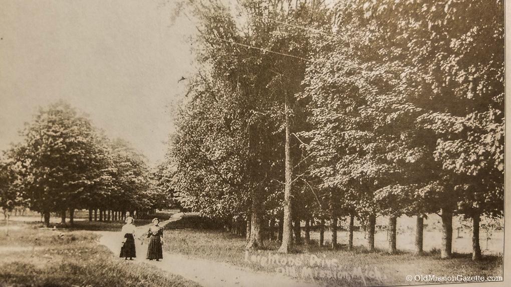 Leighton Driveway on Smokey Hollow Road