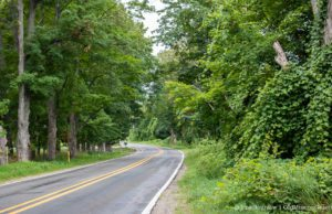 Smokey Hollow Road on the Old Mission Peninsula