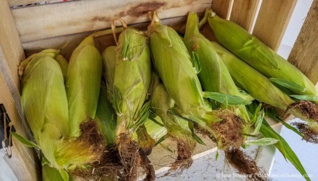 Warren Orchards' Sweet Corn