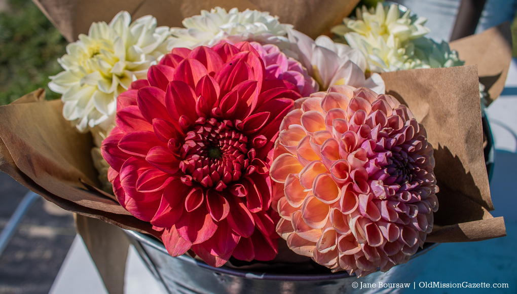 Flowers from The Farm at Cherry Hill, Seibold Orchards on the Old Mission Peninsula