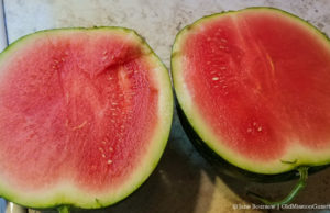 Watermelon at Local Yokels' Farm Stand | Jane Boursaw Photo