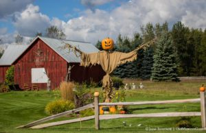 Halloween at Gorman's on Peninsula Drive, aka Louis Kauer's Barn | Jane Boursaw Photo