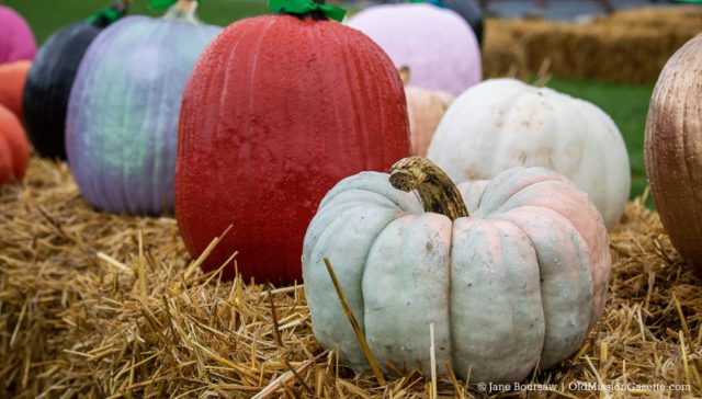Secret Garden Fall Family Fun Day on the Old Mission Peninsula