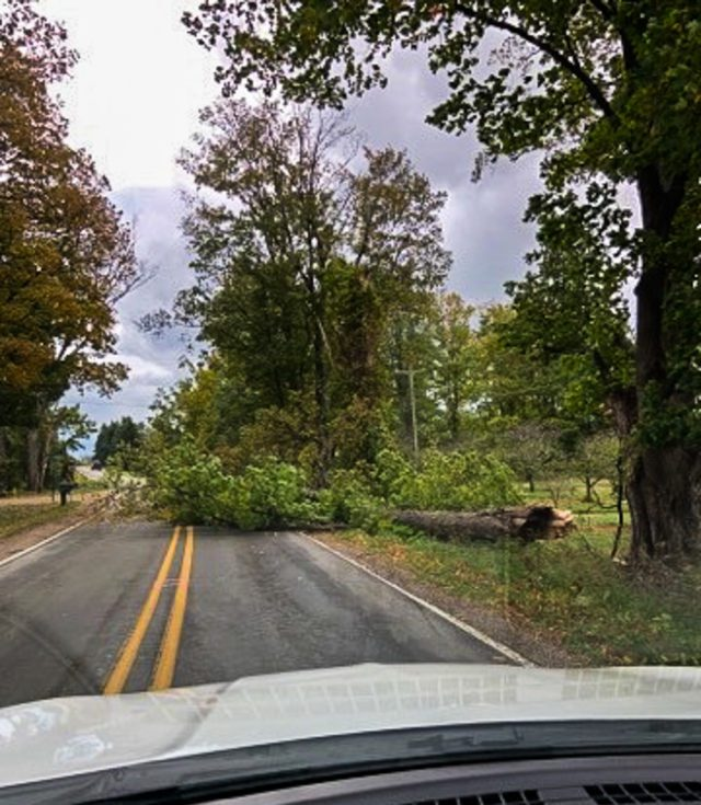 Tree down on Smokey Hollow Road on the Old Mission Peninsula