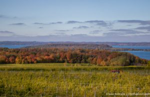 Winery Hill aka Chateau Grand Traverse on the Old Mission Peninsula; Master Plan Survey
