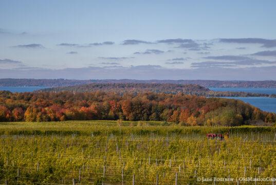 Winery Hill aka Chateau Grand Traverse on the Old Mission Peninsula; Master Plan Survey
