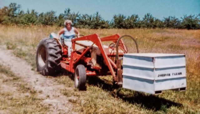 Mary Johnson on 430 Case Tractor on Johnson Farms 1980s