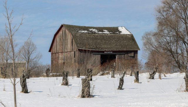 Poverty Heights Farm (Holmes family) on Center Road on the Old Mission Peninsula | Jane Boursaw Photo