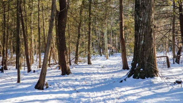 Lighthouse Trail on the Old Mission Peninsula | Jane Boursaw Photo