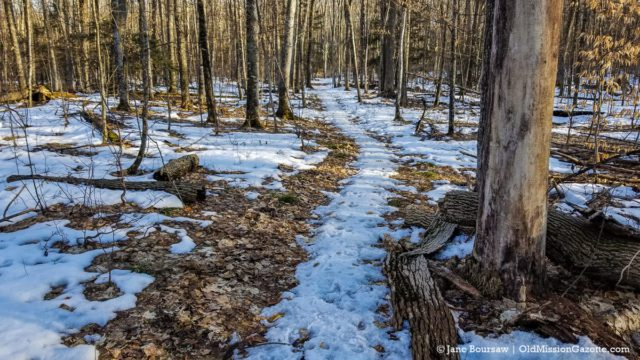 Lighthouse Trail at Old Mission Point Park | Jane Boursaw Photo