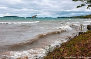 Great Lakes Whale Migration Begins, Humpback Spotted in West Bay near Power Island | Jane Boursaw Photo