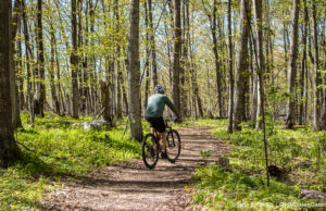 Biker at Old Mission State Park | Jane Boursaw Photo