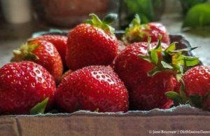 Strawberries from Local Yokels Farm Stand on the Old Mission Peninsula | Jane Boursaw Photo