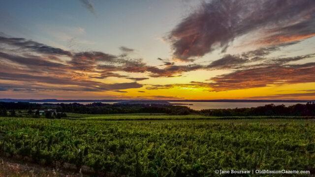 Winery Hill Sunset, Chateau Grand Traverse on the Old Mission Peninsula | Jane Boursaw Photo