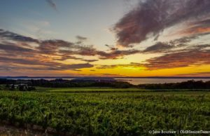 Winery Hill Sunset on the Old Mission Peninsula | Jane Boursaw Photo