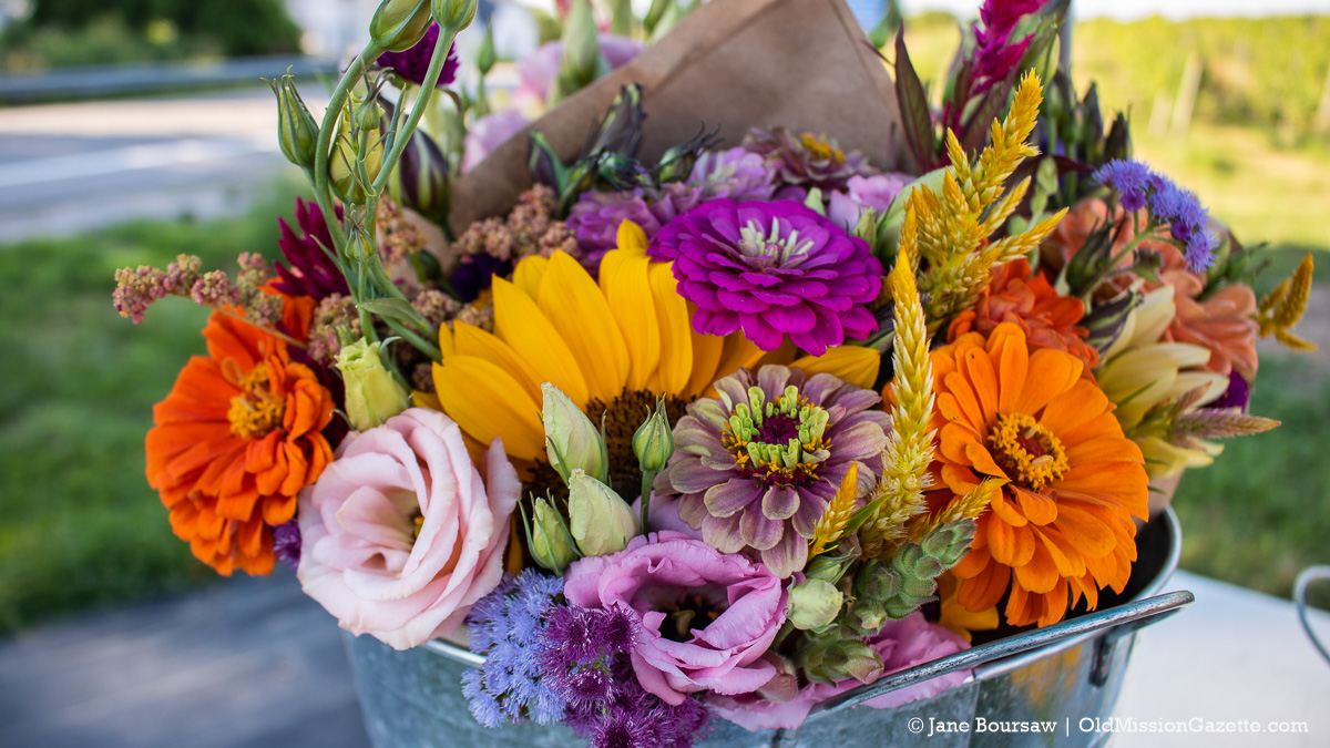 Flowers from The Farm at Cherry Hill on the Old Mission Peninsula | Jane Boursaw Photo