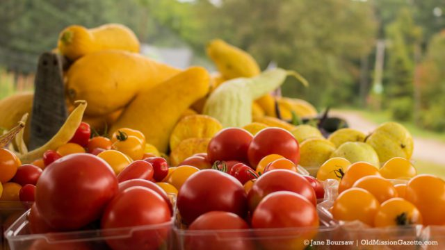 Holman's garden and farm stand in Old Mission | Jane Boursaw Photo