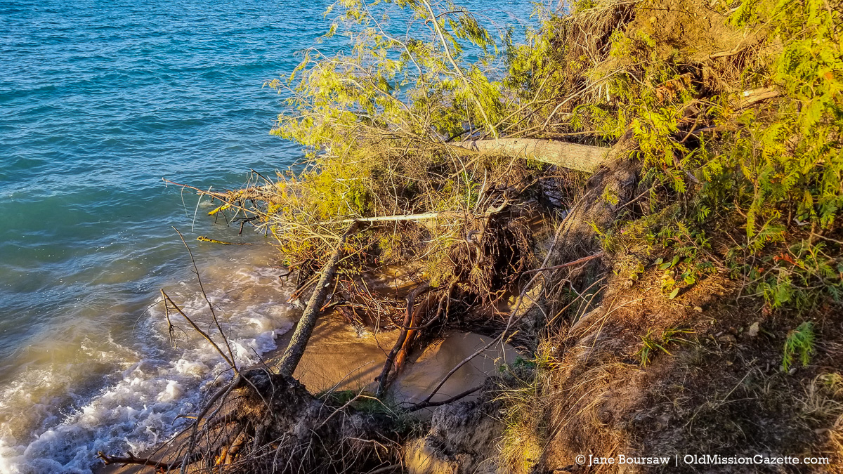 Shoreline Erosion at Mission Point Lighthouse Beach, Old Mission Peninsula | Jane Boursaw Photo