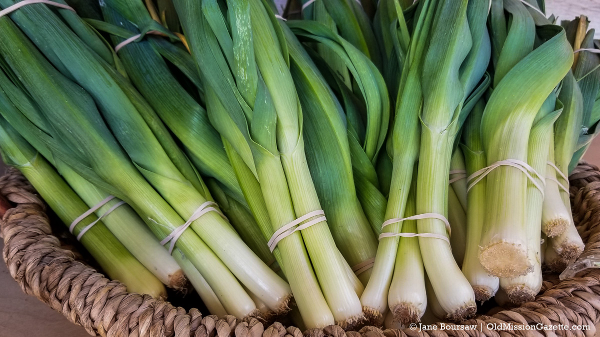 Green Onions from Local Yokels on the Old Mission Peninsula | Jane Boursaw Photo