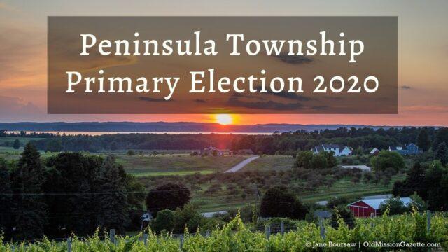Peninsula Township Primary Election 2020 | Jane Boursaw Photo