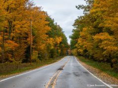 Center Road aka M37 near Mission Point Lighthouse on the Old Mission Peninsula   Jane Boursaw Photo